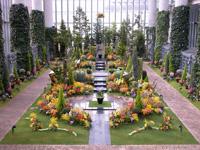 周辺_奇跡の星の植物館
