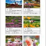 秋の公園写真コンテスト入賞作品.1.jpg