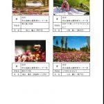 秋の公園写真コンテスト入賞作品.3.jpg