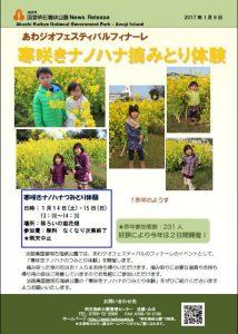 89記者発表◇寒咲きナノハナのつみとり体験170108.jpg